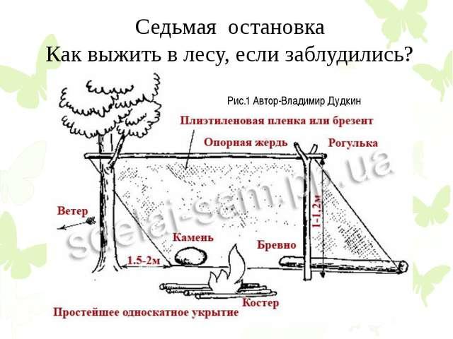Седьмая остановка Как выжить в лесу, если заблудились? Рис.1 Автор-Владимир Д...