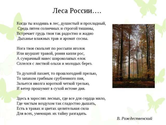 Когда ты входишь в лес, душистый и прохладный, Средь пятен солнечных и строг...