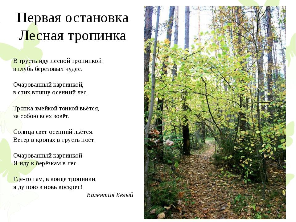 Первая остановка Лесная тропинка В грусть иду лесной тропинкой, в глубь берёз...