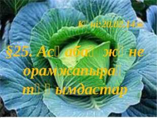 Күні:20.02.14ж §25. Асқабақ және орамжапырақ тұқымдастар