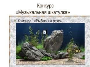 Конкурс «Музыкальная шкатулка» Команда «Рыбаки на реке»