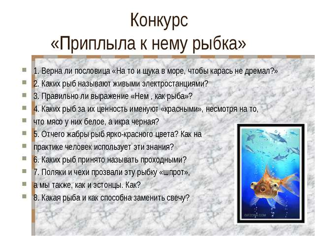 Конкурс «Приплыла к нему рыбка» 1. Верна ли пословица «На то и щука в море,...