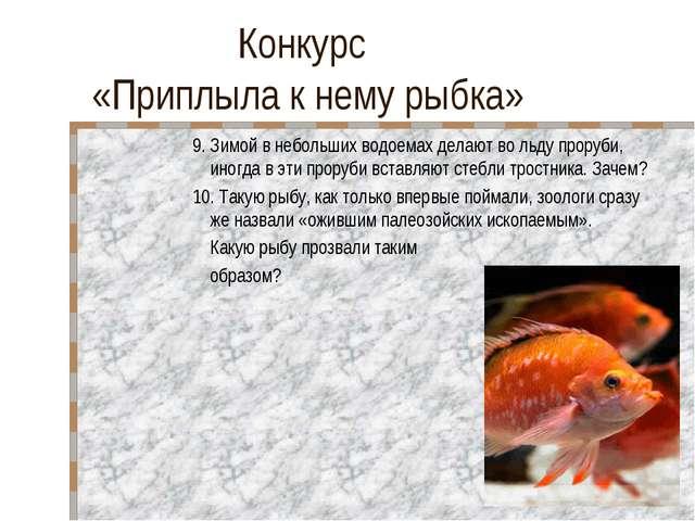 Конкурс «Приплыла к нему рыбка» 9. Зимой в небольших водоемах делают во льду...