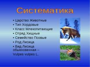 Царство Животные Тип Хордовые Класс Млекопитающие Отряд Хищные Семейство Псо