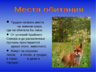 Трудно назвать места на земном шаре, где не обитала бы лиса. От условий Край