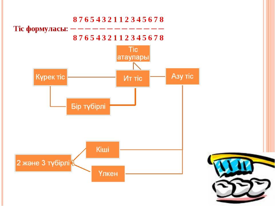 8 7 6 5 4 3 2 1 1 2 3 4 5 6 7 8 Тіс формуласы: ─ ─ ─ ─ ─ ─ ─ ─ ─ ─ ─ ─ ─ 8 7...