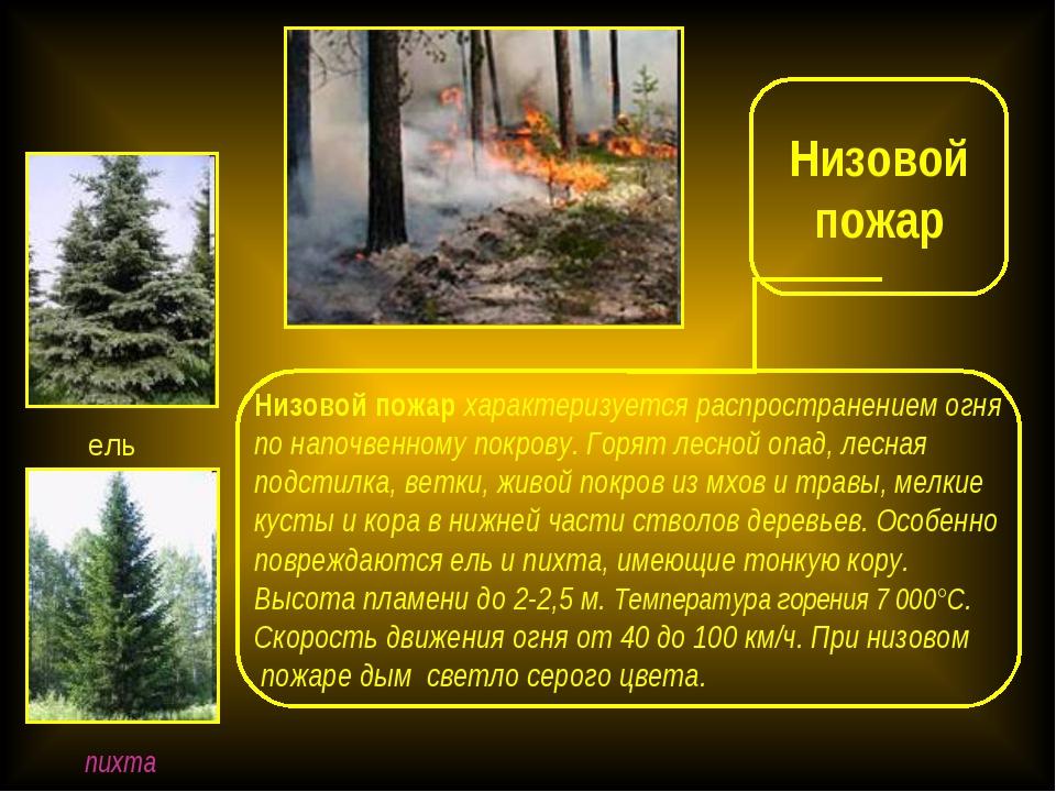 реферат меры пожарной безопасности