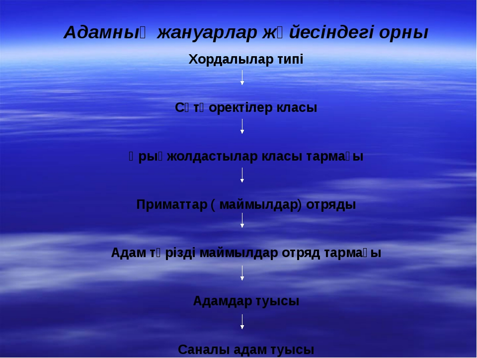 Адамның жануарлар жүйесіндегі орны Хордалылар типі Сүтқоректілер класы Ұрықжо...