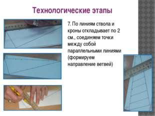 7. По линиям ствола и кроны откладывает по 2 см., соединяем точки между собой