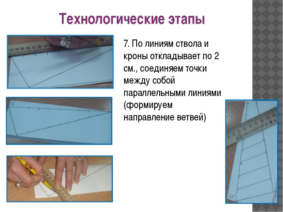 7. По линиям ствола и кроны откладывает по 2 см., соединяем точки между собой...