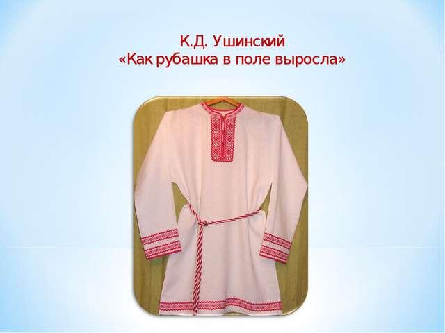 К.Д. Ушинский «Как рубашка в поле выросла»