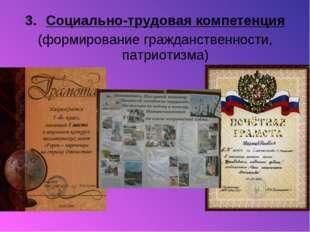 Социально-трудовая компетенция (формирование гражданственности, патриотизма)