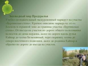 Заповедный мир Предуралья Учебно-познавательный экскурсионный маршрут на уча