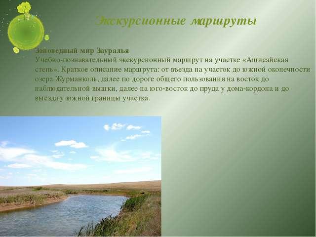 Экскурсионные маршруты Заповедный мир Зауралья Учебно-познавательный экскурси...