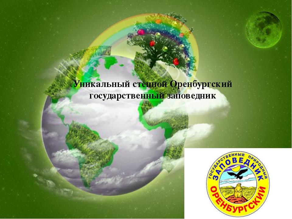 Уникальный степной Оренбургский государственный заповедник
