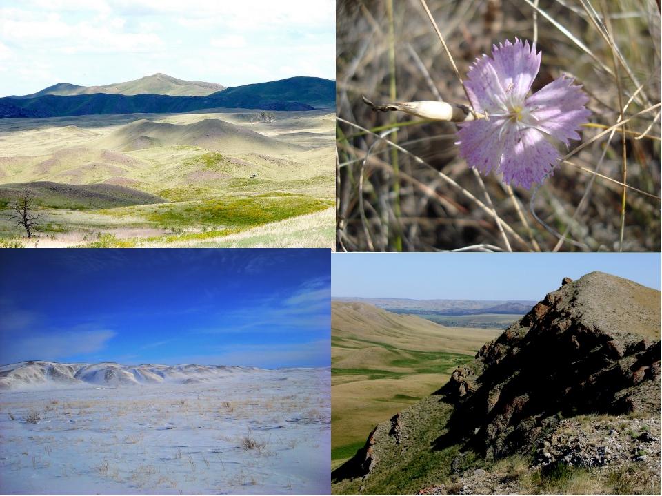 Условные обозначения к карте: 1. Бугристо-грядовые скально-останцовые склоны...