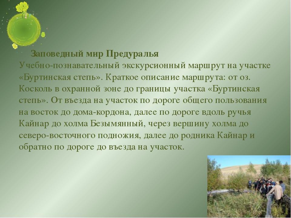 Заповедный мир Предуралья Учебно-познавательный экскурсионный маршрут на уча...