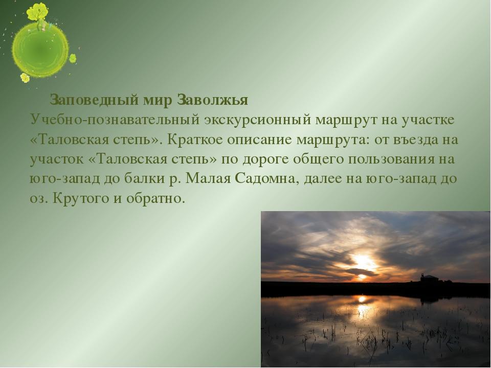 Заповедный мир Заволжья Учебно-познавательный экскурсионный маршрут на участ...