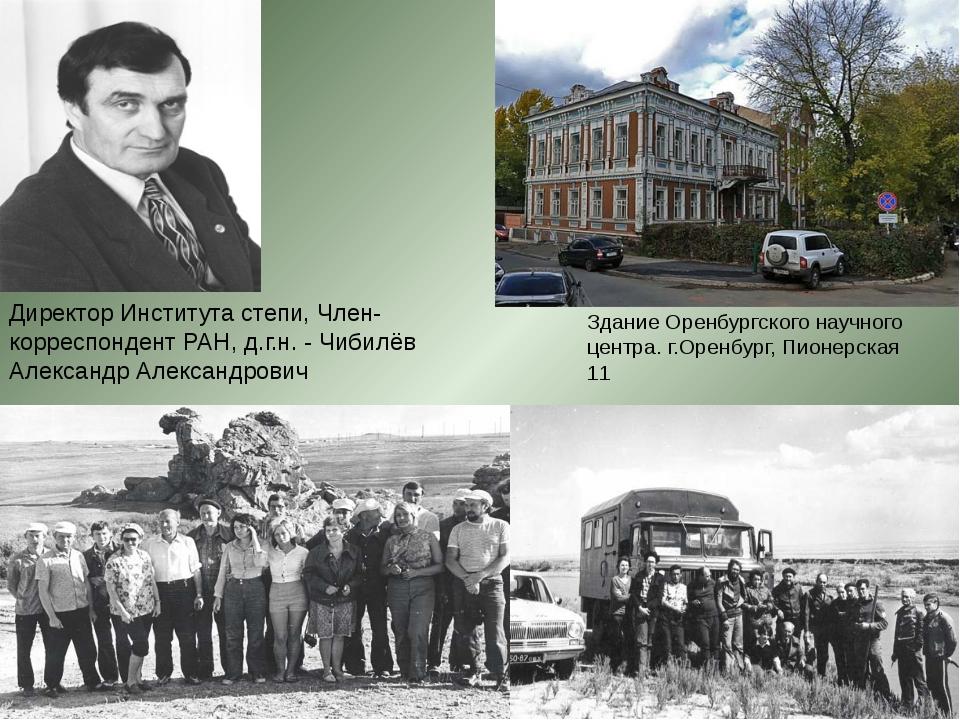 Директор Института степи, Член-корреспондент РАН, д.г.н. - Чибилёв Александр...