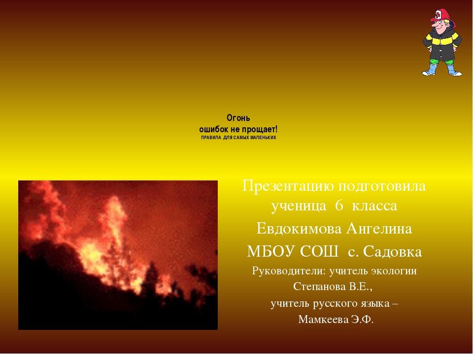 Огонь ошибок не прощает! ПРАВИЛА ДЛЯ САМЫХ МАЛЕНЬКИХ Презентацию подготовила...