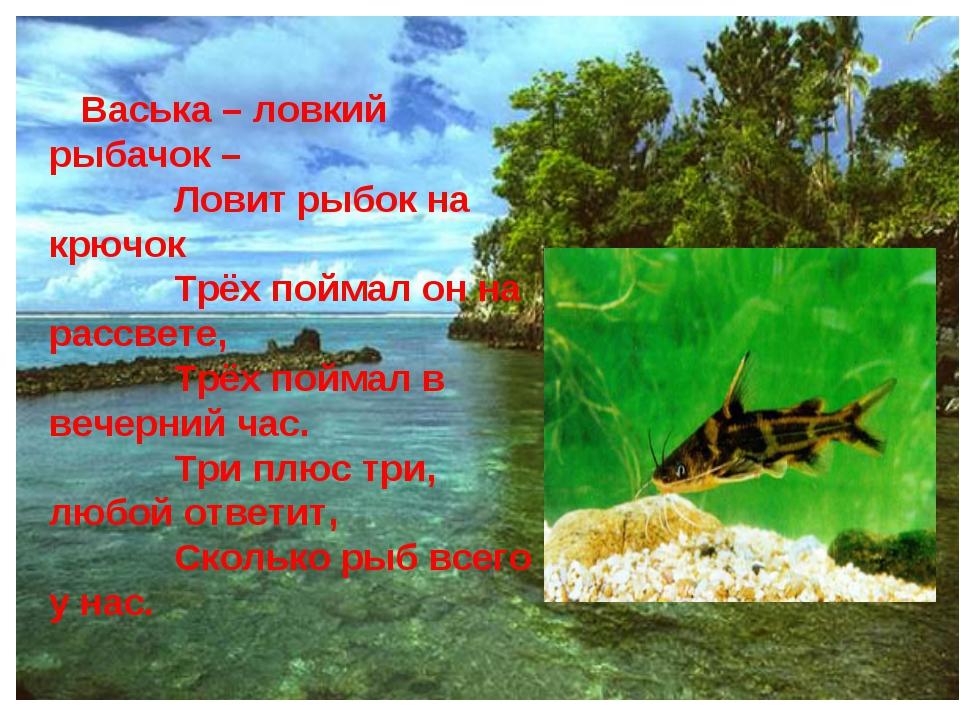 Васька – ловкий рыбачок – Ловит рыбок на крючок Трёх поймал он на рассвете,...