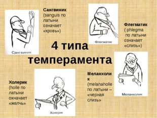 4 типа темперамента Сангвиник (sanguis по латыни означает «кровь») Флегматик