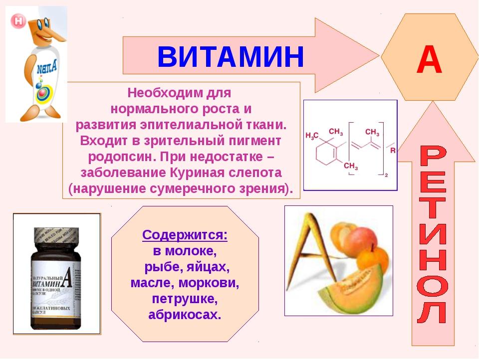 ВИТАМИН A Необходим для нормального роста и развития эпителиальной ткани. Вхо...