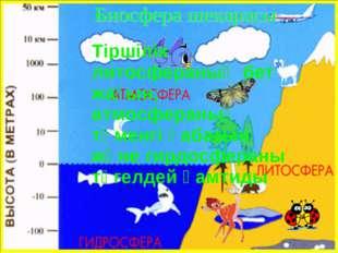 Тіршілік литосфераның бет жағын, атмосфераның төменгі қабатын және гирдосфер