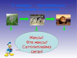 Ағзалардың өзара байланысы Interrelation of organisms Майда ағзалар Жақсы! Өт