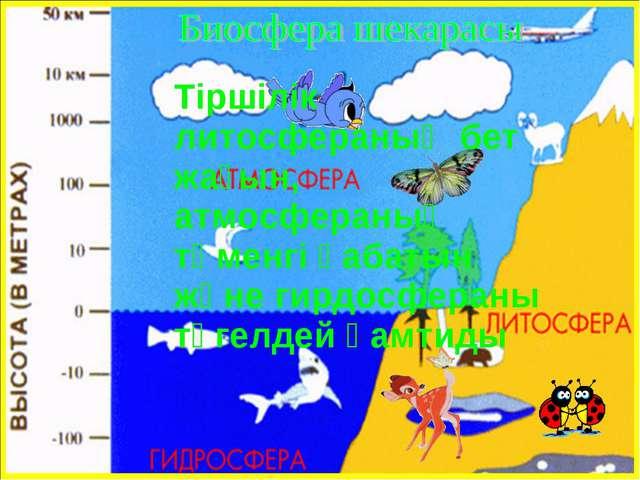 Тіршілік литосфераның бет жағын, атмосфераның төменгі қабатын және гирдосфер...
