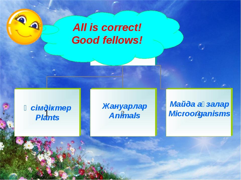 Майда ағзалар Microorganisms Өсімдіктер Plants Жануарлар Animals All is corre...
