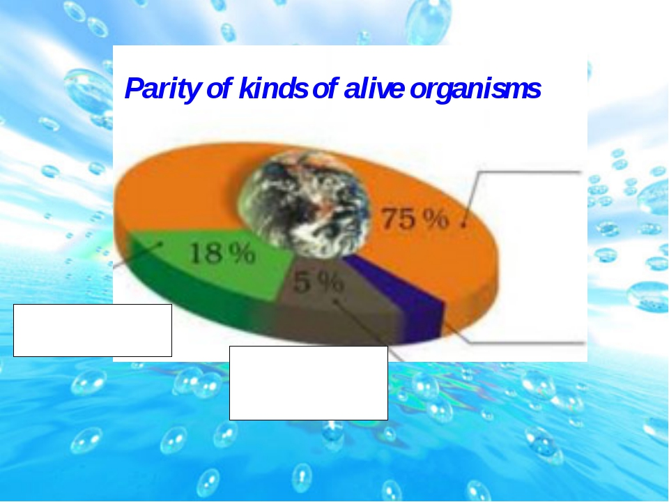 Parity of kinds of alive organisms