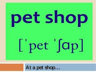 At a pet shop…