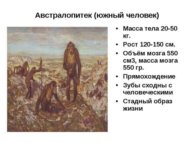Австралопитек (южный человек) Масса тела 20-50 кг. Рост 120-150 см. Объём моз...