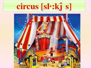 circus [sɜ:kəs]