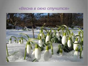 «Весна в окно стучится»