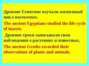 Древние Египтяне изучали жизненный цикл насекомых. The ancient Egyptians stu