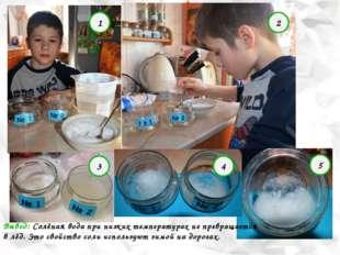 Опыт №2 «Незамерзающая соль» 1 2 3 4 5 Вывод: Солёная вода при низких темпера