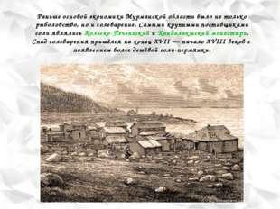 Раньше основой экономики Мурманской области было не только рыболовство, но и