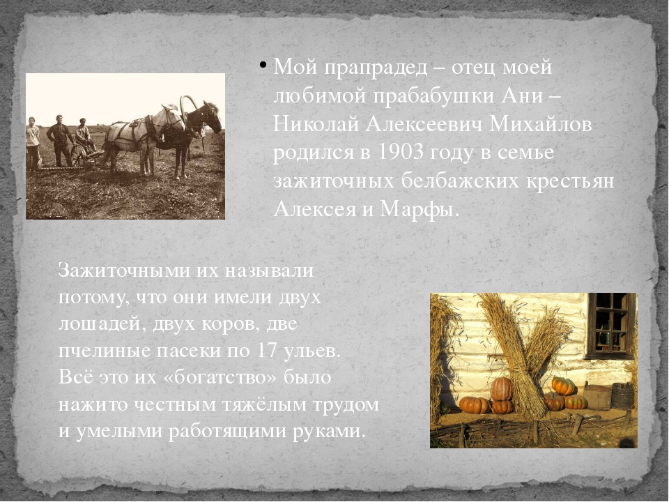 Мой прапрадед – отец моей любимой прабабушки Ани – Николай Алексеевич Михайло...