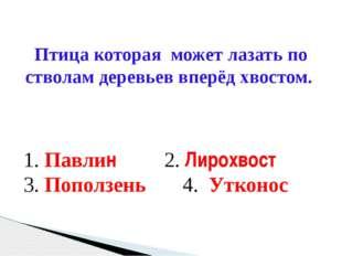 1. Пяти осьминогов 2. Одинаково 3. Другой ответ 4. Четырех каракатиц У кого б