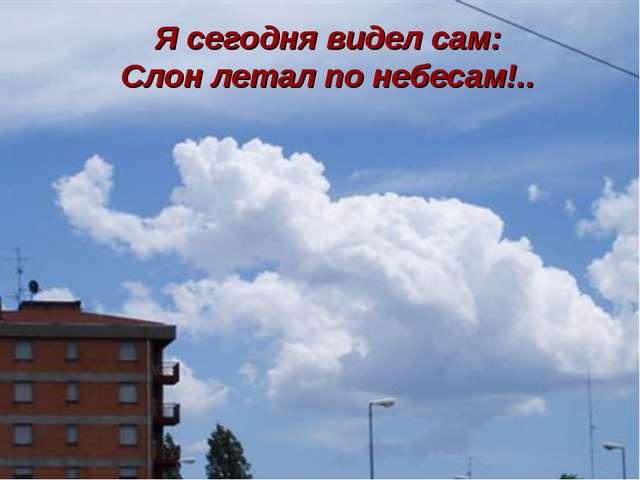 Я сегодня видел сам: Слон летал по небесам!..
