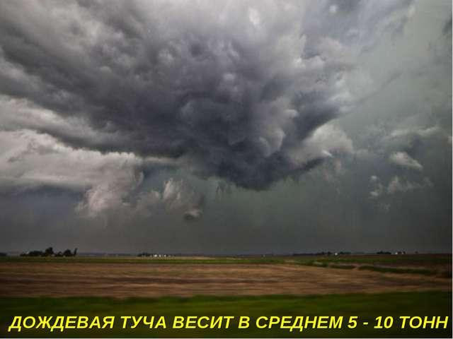 ДОЖДЕВАЯ ТУЧА ВЕСИТ В СРЕДНЕМ 5 - 10 ТОНН