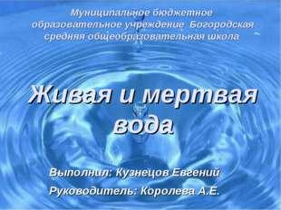 Муниципальное бюджетное образовательное учреждение Богородская средняя общео
