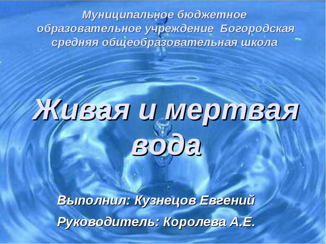 Муниципальное бюджетное образовательное учреждение Богородская средняя общео...