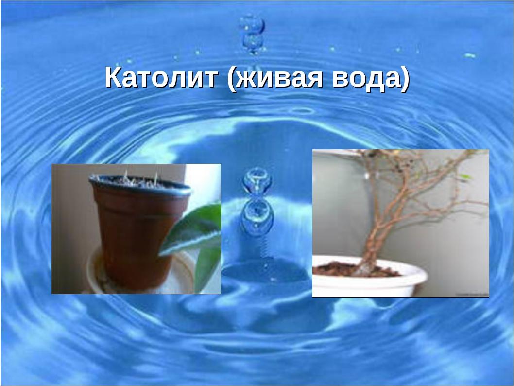 Живая И Мертвая Вода Презентация