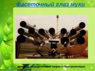 Фасеточный глаз мухи детектор, определяющий скорость быстролетящих самолетов