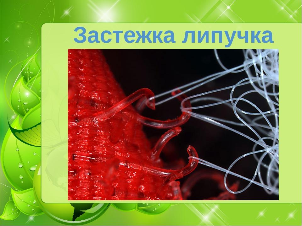 Застежка липучка Классическим примером бионического изобретения является зас...