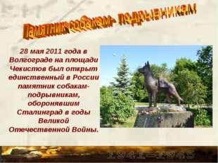 28 мая 2011 года в Волгограде на площади Чекистов был открыт единственный в Р