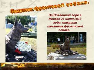 На Поклонной горе в Москве 21 июня 2013 года открыли памятник фронтовой собак